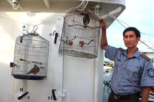 Kiểm ngư viên Hoàng Văn Việt và 2 chuồng chim huyền thoại - Ảnh: Mai Thanh Hải