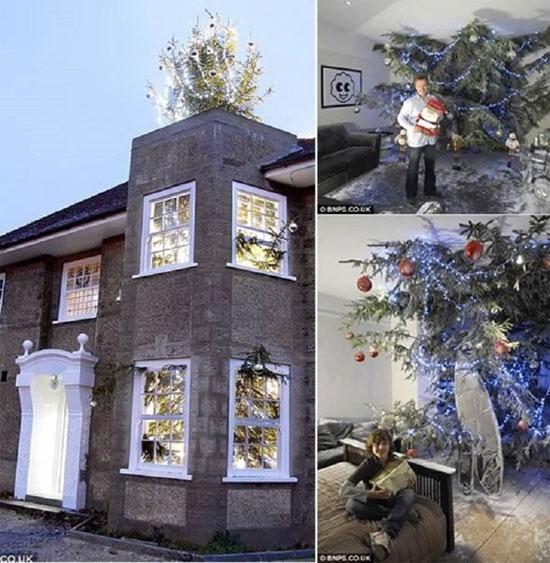 Cây thông khổng lồ xuyên mái nhà là món quà Giáng sinh đặc biệt mà ông bố đơn thân ở Anh tặng cho 3 đứa con. (Ảnh: BNPS)