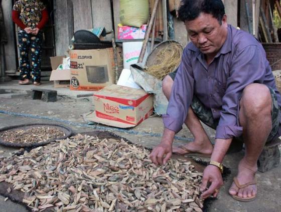 """Ông Nguyễn Văn Tiến (57 tuổi, trú bản Cam, xã Cam Lâm, Con Cuông, Nghệ An) """"nổi tiếng"""" bởi có đến 9 người vợ."""