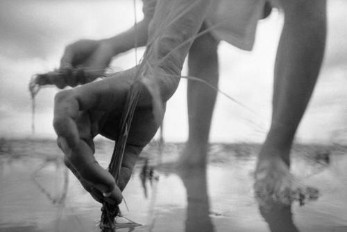 Người nông dân trồng lúa tại khu vực đồng bằng sông Cửu Long tháng 8/1968. (AP/ The Atlantic)