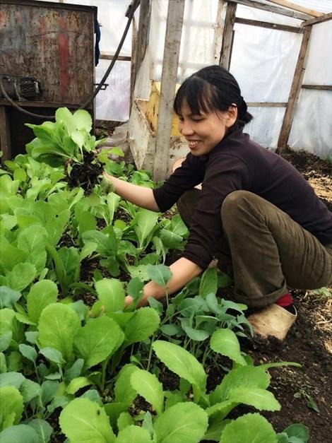 Bà Sáu bên luống rau xanh mát