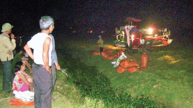 Người dân xã Nghi Vạn, huyện Nghi Lộc (Nghệ An) gặt lúa ban đêm để tránh nắng - Ảnh: Bằng Lăng