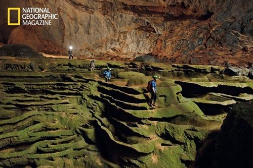 """Hệ thực vật phong phú ở Sơn Đoòng được ví như """"khu vườn địa đàng"""". Ảnh: National Geographic"""