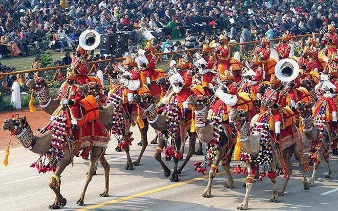 Đội quân lạc đà của lực lượng biên phòng Ấn Độ có nhiệm vụ bảo vệ biên giới thuộc vùng sa mạc giữa Ấn Độ và Pakistan. Trong ngày lễ Cộng hòa của Ấn Độ (26/1), lính biên phòng Ấn Độ cưỡi những con lạc đà diêm dúa để tham gia diễu binh ở trung tâm thủ đô Dehli.