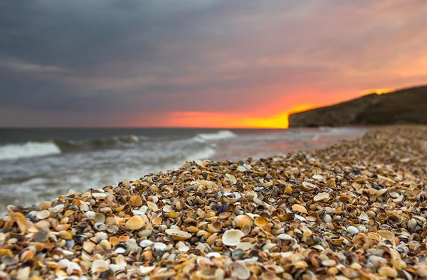 Bãi biển đầy vỏ sò ở phía bắc Kerch.