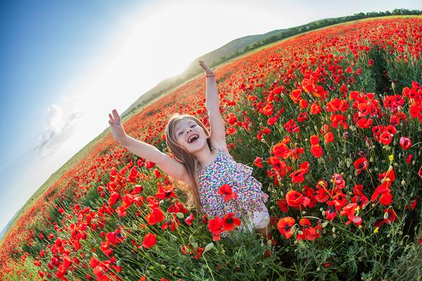 Mùa hè tươi đẹp đầy sức sống ở Crimea.