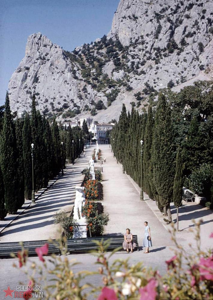 Một con đường dẫn từ thị trấn Simeiz đến núi Con Mèo.