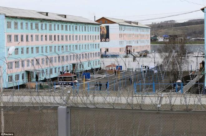 Nhà tù an ninh nghiêm ngặt nằm gần thành phố Krasnoyarsk của Siberia. Đây là nơi thụ án của những phạm nhân đặc biệt nghiêm trọng, thường liên quan tới ma túy hoặc giết người. 260 kẻ từng bị giam giữ ở đây đã giết chết tổng cộng 800 người trước khi bị bắt, BBC đưa tin.