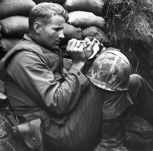 Frank Praytor, trung sĩ hải quân Mỹ, đang cho con mèo 2 tuần tuổi ăn trong cuộc chiến tranh Triều Tiên năm 1952 sau khi mèo mẹ chết. Nhiều trang báo cho rằng, bức ảnh là một trong 30 tác phẩm đắt giá nhất trong chiến tranh và lay động trái tim hàng triệu người. Ảnh: Viralnova.com